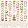 Set of scrapbooking papers - House of roses EXTRA